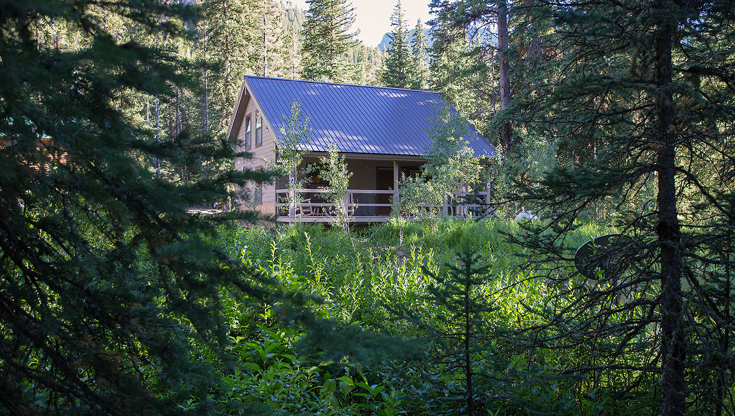 cabins lakeview and yellowstone outsidelakeviewnew island lodge lodges park
