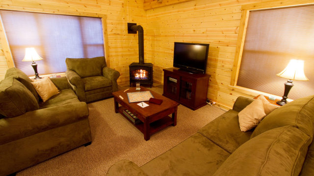 The living room, with satellite TV, fireplace and queen-size sleeper sofa.